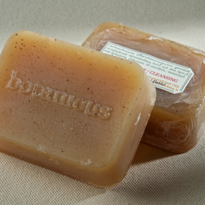 treatment soap CLEANSING